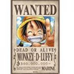 poster recompensa luffy